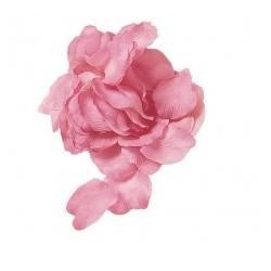 Petali Rosa Antico